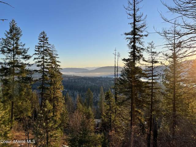 Lot 4 Seneca Drive, Sandpoint, ID 83864 (#21-4010) :: Team Brown Realty