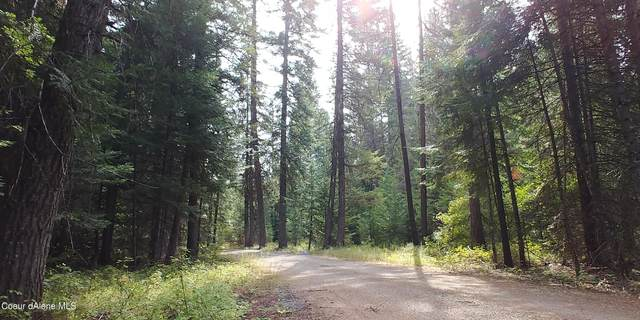 Address Not Published, Priest River, ID 83856 (#21-4033) :: Prime Real Estate Group