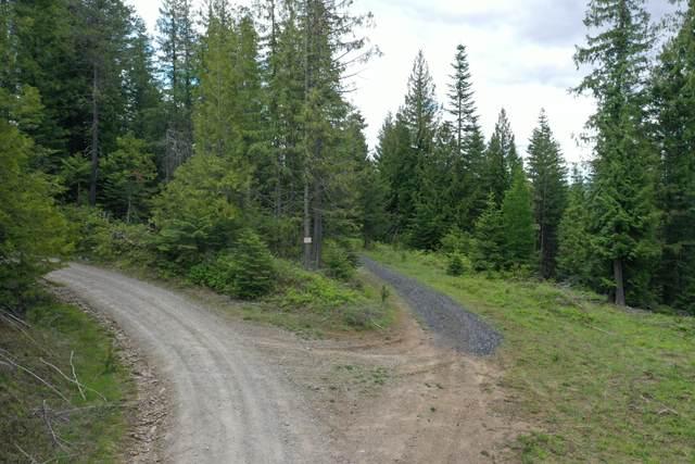 NKA Nw Fork Santa Creek Rd, St. Maries, ID 83861 (#21-4061) :: Keller Williams Realty Coeur d' Alene