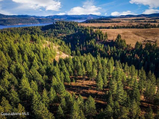 NNA Cave Bay Rd, Worley, ID 83876 (#21-4107) :: Keller Williams Realty Coeur d' Alene