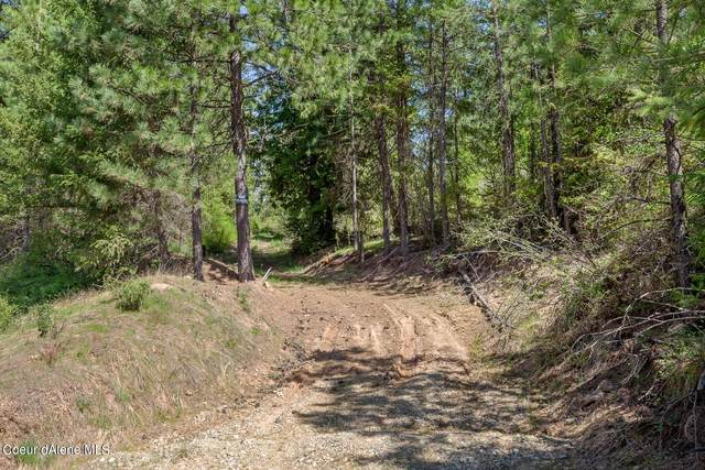 10822 S Carlin Bay Road, Harrison, ID 83833 (#21-4116) :: ExSell Realty Group