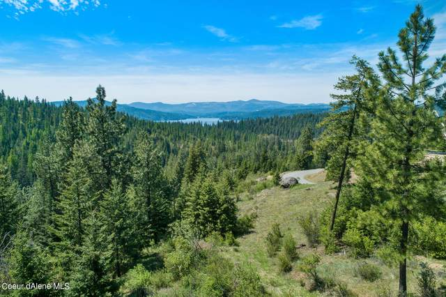 L134 Echo Canyon Drive, Harrison, ID 83833 (#21-4132) :: HergGroup Coeur D'Alene