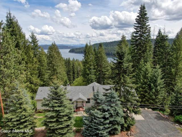 22040 S Lakeview Dr, Worley, ID 83876 (#21-4176) :: Team Brown Realty