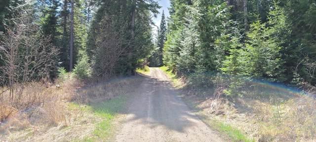 1510 Santa Creek Rd, St. Maries, ID 83861 (#21-4199) :: Team Brown Realty