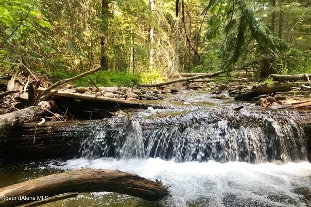 NNA Trapper Creek, Sandpoint, ID 83864 (#21-4377) :: Flerchinger Realty Group - Keller Williams Realty Coeur d'Alene