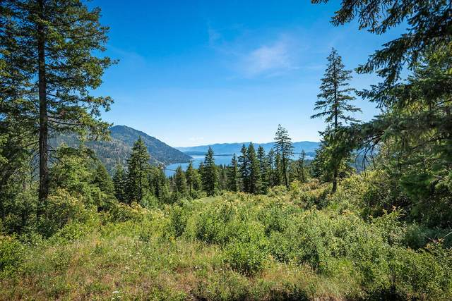 Lot T1 Green Monarch Lane, Sandpoint, ID 83864 (#21-4420) :: Team Brown Realty
