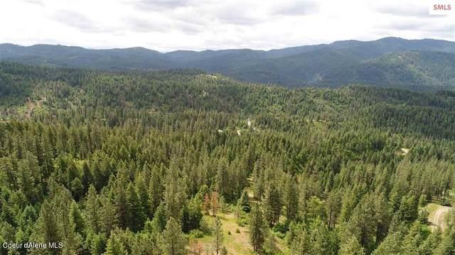 NNA Bobsled Trail, Coeur d'Alene, ID 83814 (#21-4484) :: Team Brown Realty