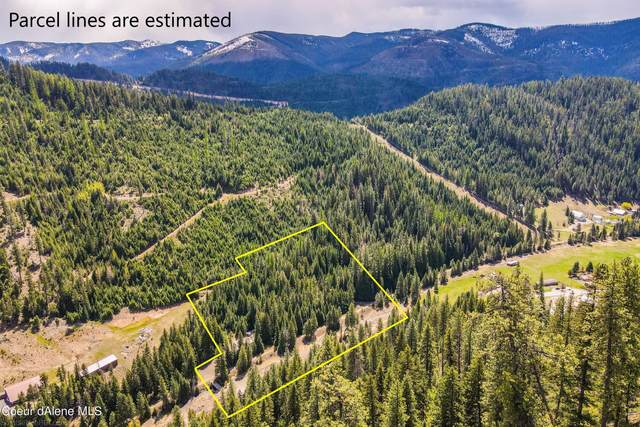 1706a Nine Mile Road, Wallace, ID 83873 (#21-4497) :: Team Brown Realty