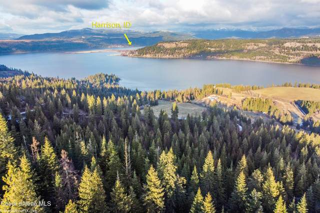 34.38 AC. S Bloomsburg Bay Rd, Worley, ID 83876 (#21-450) :: Five Star Real Estate Group