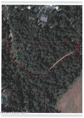 NKA Canyon View Drive Parcel 4, St. Maries, ID 83861 (#21-4522) :: Team Brown Realty