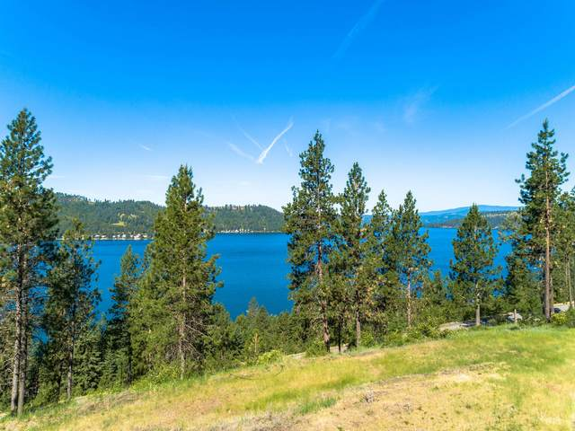 Lt 90 Blk3 Stonegate At Harrison, Harrison, ID 83833 (#21-491) :: ExSell Realty Group
