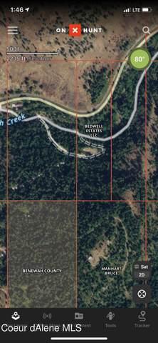 176 Blake Creek Road, St. Maries, ID 83861 (#21-5462) :: CDA Home Finder