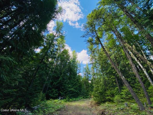 10 Acre Namaste Path, Sandpoint, ID 83864 (#21-5496) :: Keller Williams Realty Coeur d' Alene