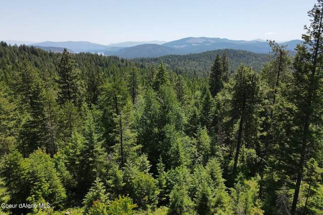 NNA Green Valley Rd Lot 51A, Sandpoint, ID 83864 (#21-5732) :: Link Properties Group