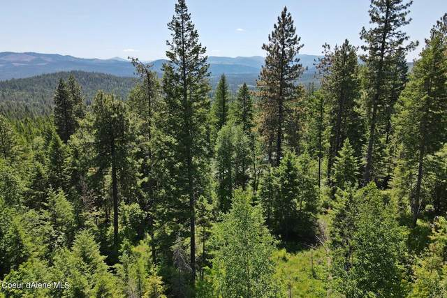 NNA Green Valley Rd Lot 51B, Sandpoint, ID 83864 (#21-5751) :: Link Properties Group