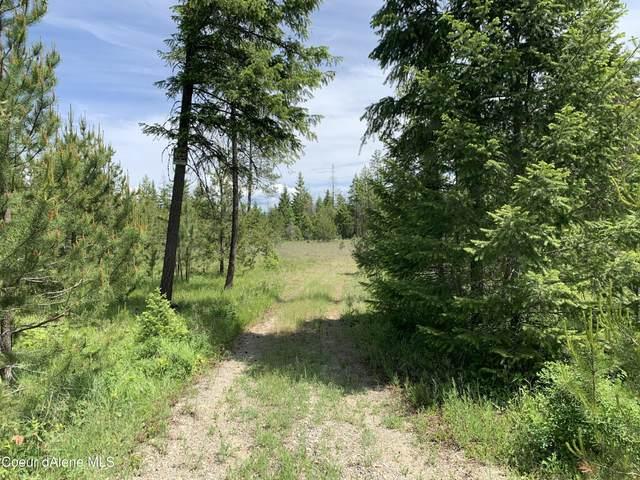 NKA N Bodie Canyon Tract 2, Priest River, ID 83856 (#21-6032) :: Chad Salsbury Group