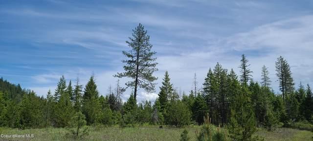 NKA N Bodie Canyon Tract 3, Priest River, ID 83856 (#21-6033) :: Chad Salsbury Group