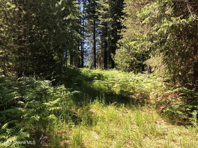L9 B1 Bear Claw Rd, Clark Fork, ID 83811 (#21-6056) :: Chad Salsbury Group