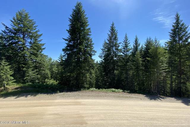 135 Olympic Dr, Sandpoint, ID 83864 (#21-6084) :: Link Properties Group