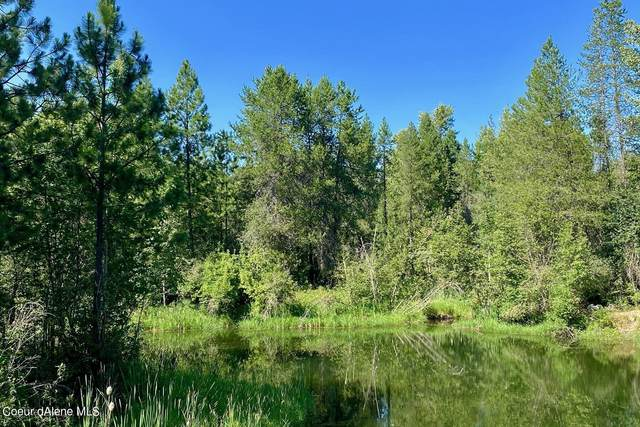 L5B2A Dover Bay Estuary Forest, Dover, ID 83825 (#21-7287) :: Real Estate Done Right