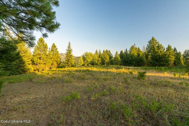 NNA Meligan Rd, Kingston, ID 83839 (#21-7476) :: ExSell Realty Group