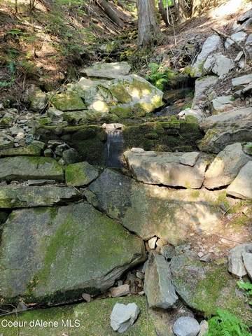 L3 S Latour Creek Rd, Cataldo, ID 83810 (#21-7478) :: Embrace Realty Group