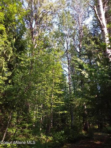 NKA Elk Grove Road, Sandpoint, ID 83864 (#21-7501) :: Flerchinger Realty Group - Keller Williams Realty Coeur d'Alene