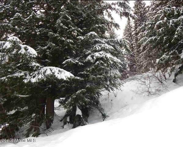 NKA Snowplow Road, Sandpoint, ID 83864 (#21-763) :: Keller Williams Realty Coeur d' Alene