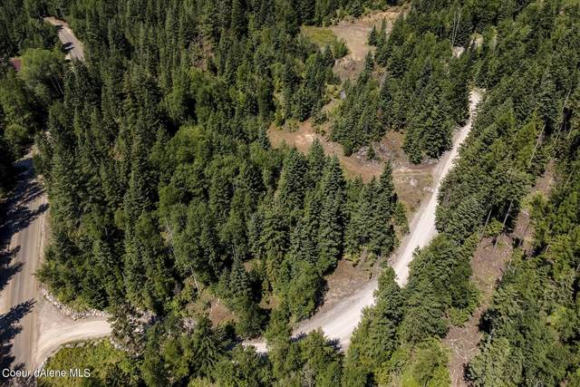 Lot 12C Baldy Mountain Rd, Sandpoint, ID 83864 (#21-7741) :: Team Brown Realty