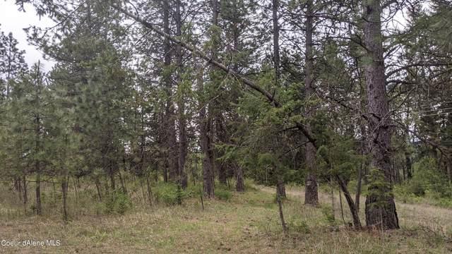 850 Diamond Heights, Oldtown, ID 83822 (#21-7890) :: Keller Williams CDA