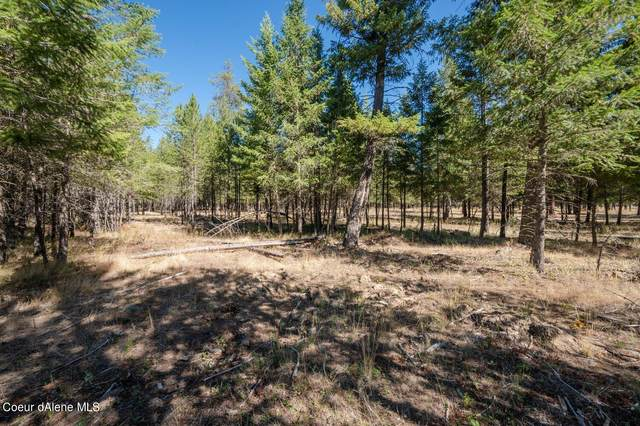 NNA Mohawk Dr Lot #4, Athol, ID 83801 (#21-9770) :: Real Estate Done Right