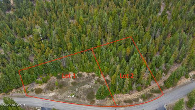Blk 13 Lots 1&2 Long Dr, Priest Lake, ID 83856 (#21-9774) :: Prime Real Estate Group