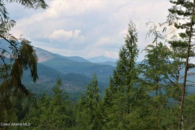 40a Stormy Ln, Sandpoint, ID 83864 (#21-9798) :: Amazing Home Network