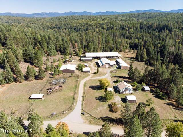 3075 Gold Creek Rd, Sandpoint, ID 83864 (#21-9948) :: Amazing Home Network