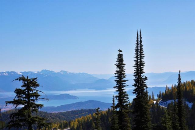 NNA Tall Timber B1l6, Sandpoint, ID 83864 (#17-10647) :: Link Properties Group