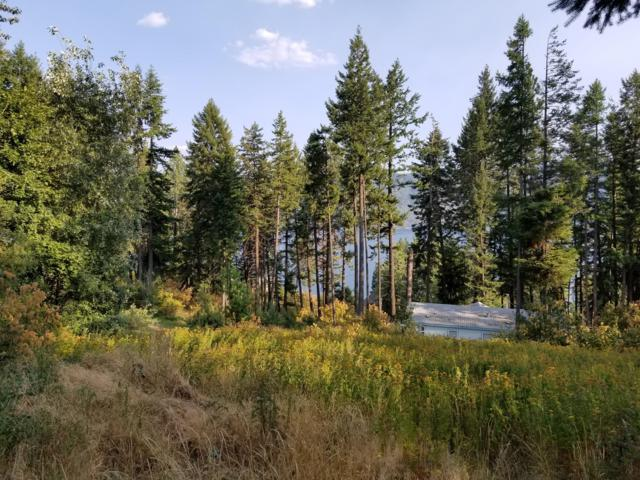 L 10 Cape Horn Circle, Bayview, ID 83803 (#17-12001) :: Prime Real Estate Group
