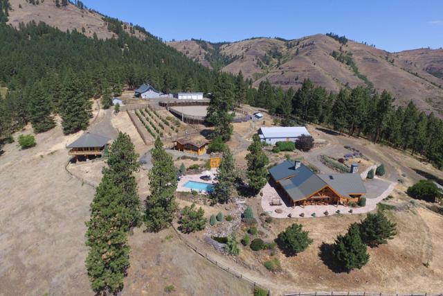 209 Big Canyon Rd, Whitebird, ID 83554 (#17-6548) :: Link Properties Group