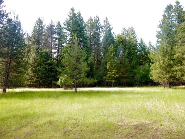 NNA English Point Rd, Hayden, ID 83835 (#17-6637) :: Link Properties Group