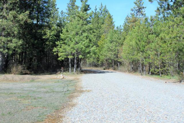 28874 N Silver Meadows Loop, Athol, ID 83801 (#17-6748) :: Chad Salsbury Group