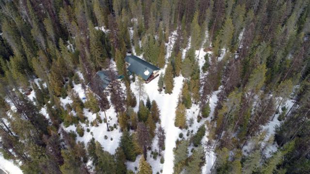 2158 Reeder Creek Rd, Nordman, ID 83848 (#17-6933) :: Link Properties Group