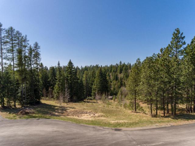 14563 N Saddle Ridge Rd, Rathdrum, ID 83858 (#18-11434) :: The Stan Groves Real Estate Group