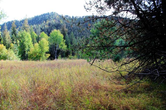 01 W Branch Rd, Priest River, ID 83856 (#18-11477) :: The Stan Groves Real Estate Group