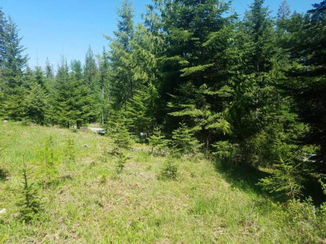nna Bottle Bay Rd, Sagle, ID 83860 (#18-2322) :: Team Brown Realty