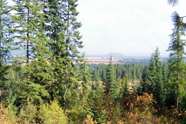 Lot 3 Rooster Road W, Coeur d'Alene, ID 83814 (#18-293) :: Embrace Realty Group