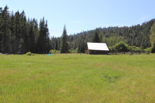 25826 N Fjord Rd, Rathdrum, ID 83858 (#18-3324) :: Northwest Professional Real Estate