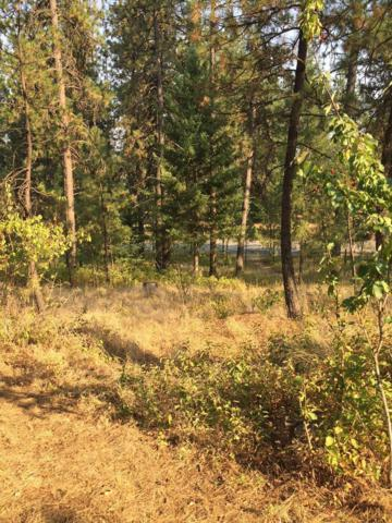 Lot 5 N Chase Rd, Rathdrum, ID 83858 (#18-9214) :: Prime Real Estate Group