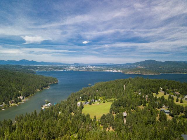 NKA Greenfield, Coeur d'Alene, ID 83814 (#19-1619) :: Link Properties Group