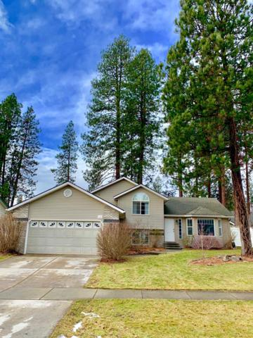 686 S Widgeon St, Post Falls, ID 83854 (#19-187) :: Prime Real Estate Group