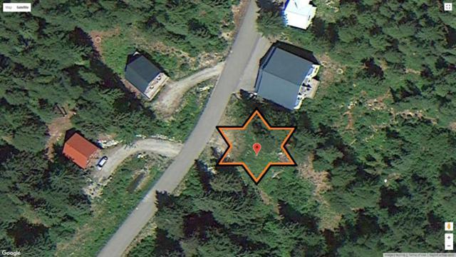 79 Snowplow Rd, Sandpoint, ID 83864 (#19-4185) :: Mandy Kapton | Windermere