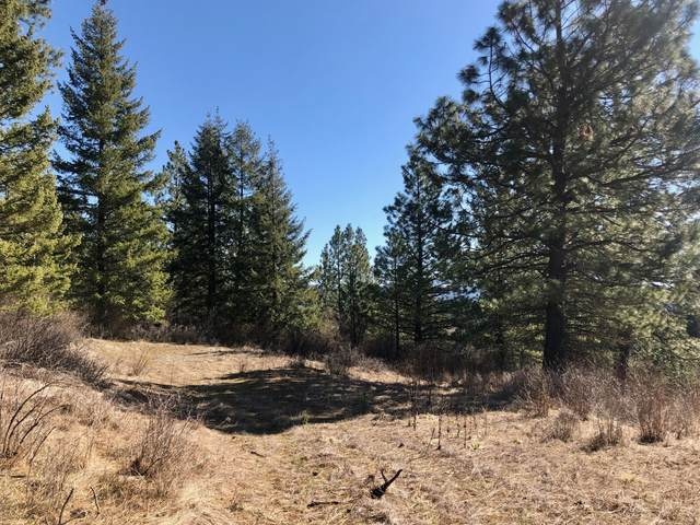 NNA S Cedar Grove Rd, Harrison, ID 83833 (#19-7082) :: CDA Home Finder